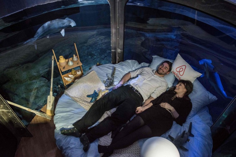 Alister Shipman and Hannah Simpson, winners of a competition on the Airbnb accommodation site, lie in bed at the Aquarium de Paris on April 11, 2016 in Paris. The winners were offered a free one night stay in an underwater bedroom surrounded by a shark tank at the French capital city aquarium. (PHILIPPE LOPEZ/AFP/Getty Images)