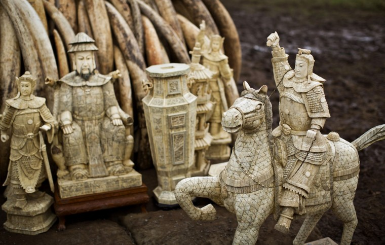 Ivory statues stand in front of one of around a dozen pyres of elephant tusks, in Nairobi National Park, Kenya Thursday, April 28, 2016. The Kenya Wildlife Service (KWS) has stacked 105 tons of ivory consisting of 16,000 tusks, and 1 ton of rhino horn, from stockpiles around the country, in preparation for it to be torched on Saturday to encourage global efforts to help stop the poaching of elephants and rhinos. (AP Photo/Ben Curtis)
