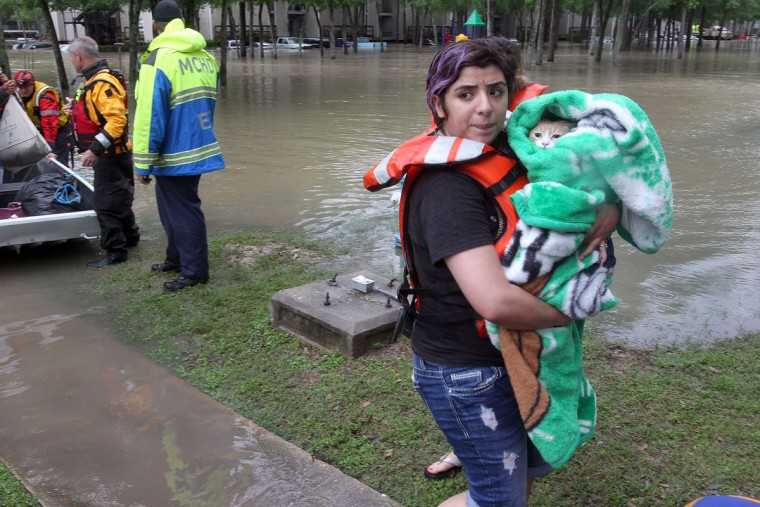Madelene Flores holds Ricky the cat after being rescued from the One Westfield Lake Apartments in Houston, Texas, Wednesday, April 20, 2016. Thousands of people have been evacuated from their homes and major highways were closed after the rains that started Sunday overwhelmed Houston's bayous. Forecasters have issued another flash flood watch for Houston through Wednesday night. (Steve Gonzales/Houston Chronicle via AP)