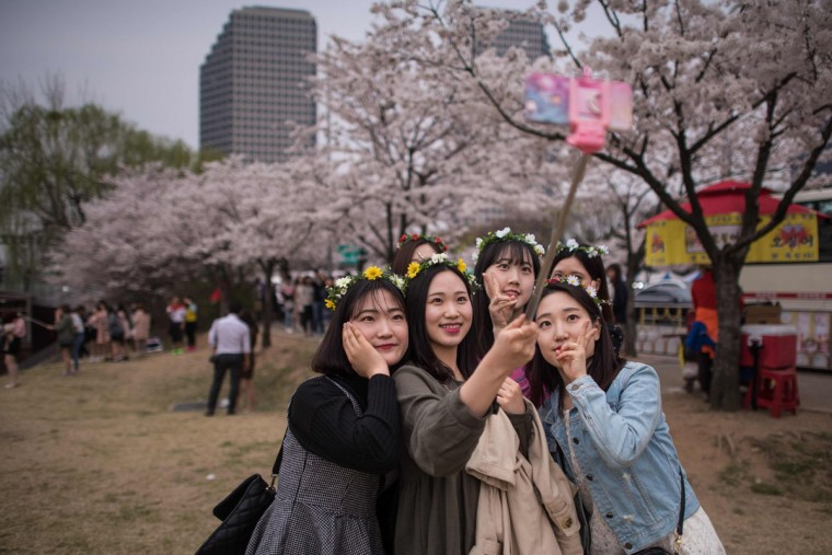 In a photo taken on April 6, 2016 a group of women take a selfie beneath cherry blossoms on Yeouido island in Seoul. The annual cherry blossom festival on Yeouido island in central Seoul runs from April 1-10. (ED JONES/AFP/Getty Images)