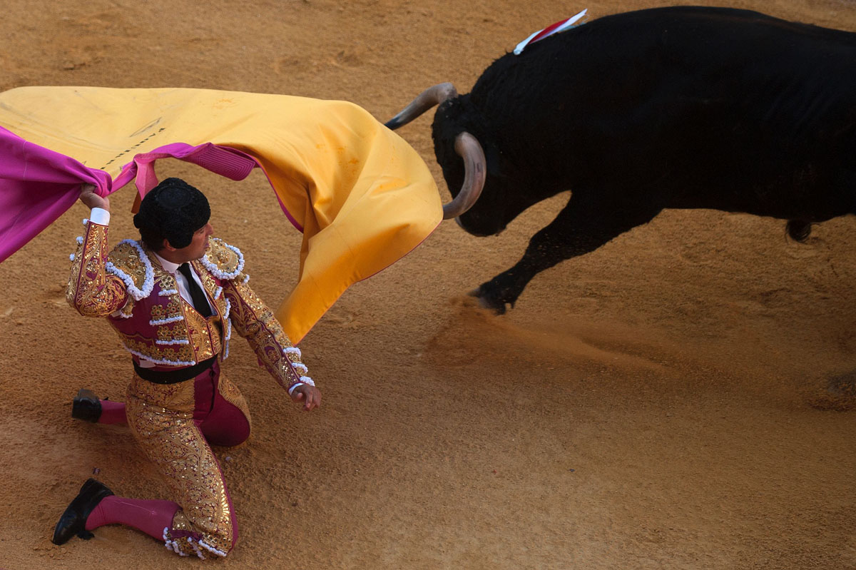 Corpus bullfighting festival under way in Granada