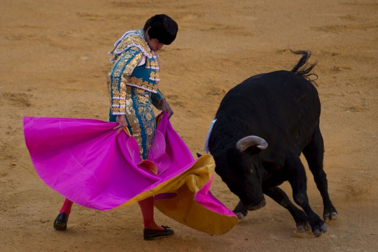 "Spanish matador Cayetano Rivera performs a pass with ""capote"" on a bull during the Corpus bullfight festival at the bullring of Granada on May 25, 2016.(JORGE GUERRERO/AFP/Getty Images)"