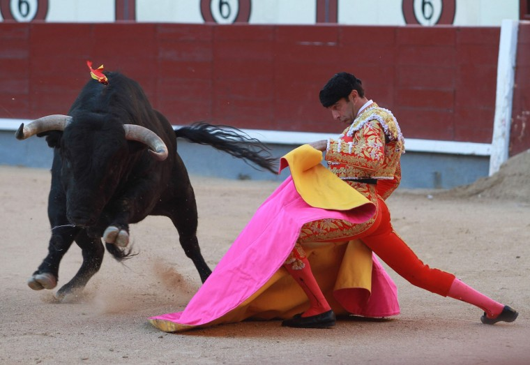 """Spanish matador Enrique Ponce performs a pass with """"capote"""" to a bull during the San Isidro Feria at Las Ventas bullring in Madrid on May 19, 2016. (Alberto Simon/AFP/Getty Images)"""