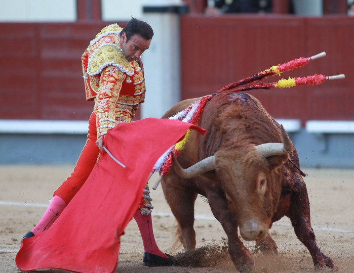 """Spanish matador Enrique Ponce performs a pass with """"muleta"""" to a bull during the San Isidro Feria at Las Ventas bullring in Madrid on May 19, 2016. (Alberto Simon/AFP/Getty Images)"""