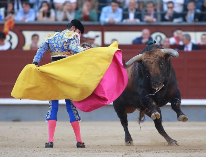 Spanish matador Alejandro Talavante performs a pass on a bull during the San Isidro Feria at Las Ventas bullring in Madrid on May 18, 2016. (Alberto Simon/AFP/Getty Images)