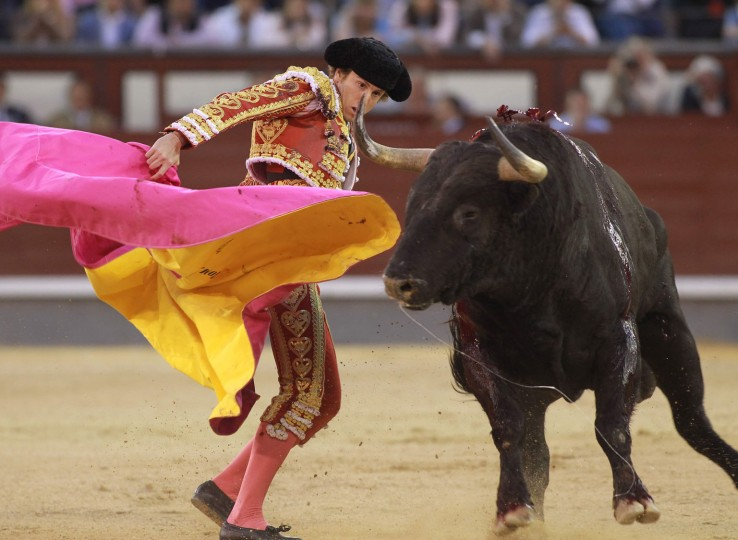 """Spanish matador Roman performs a pass with """"capote"""" to a bull during the San Isidro Feria at Las Ventas bullring in Madrid on May 19, 2016. (Alberto Simon/AFP/Getty Images)"""