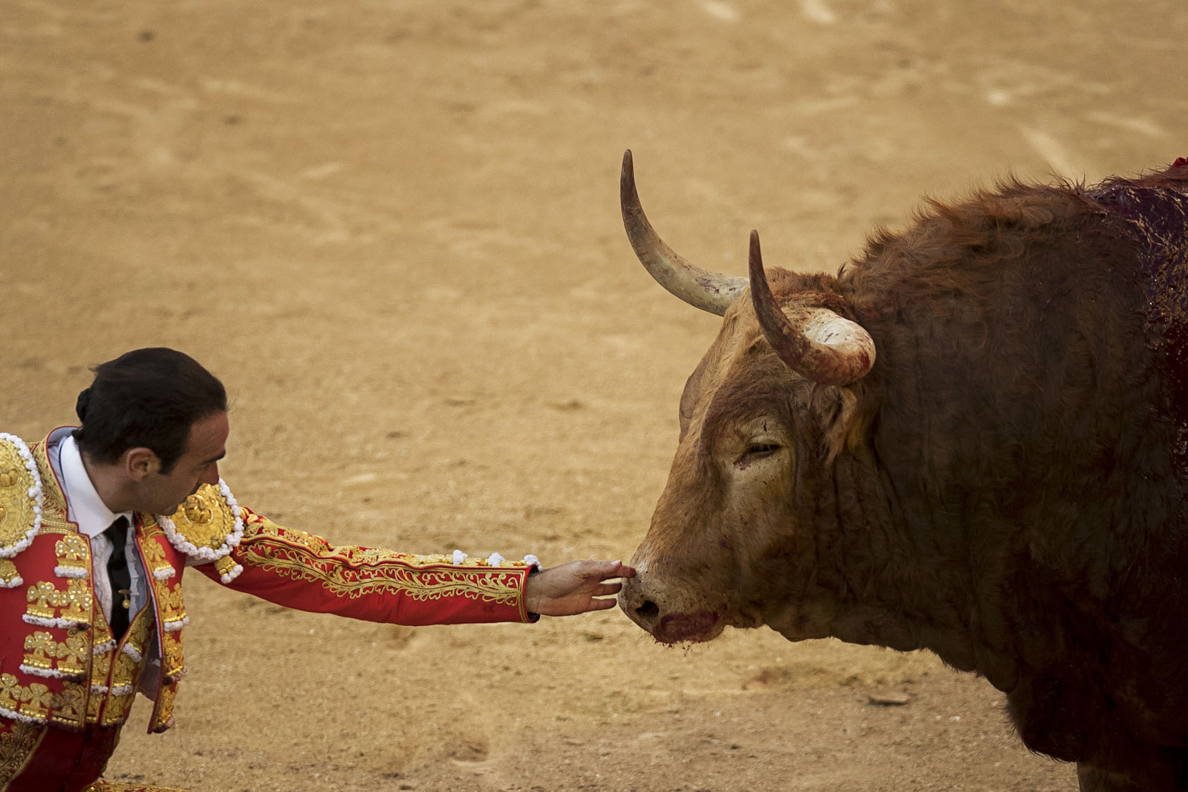 spanish bullfighting Meet the students who dream of becoming spain's new generation of bullfighters even as opposition to bullfighting grows.