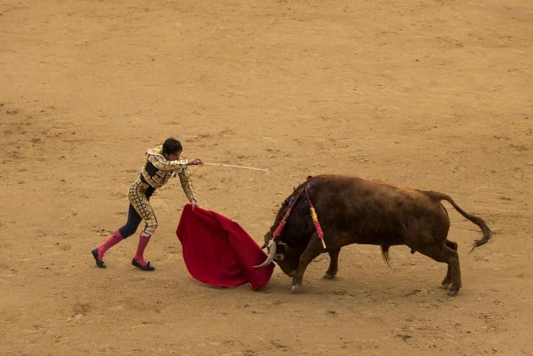 Spanish bullfighter Juan Del Alamo aims his sword just before killing a Pedraza de Yeltes ranch fighting bull with it during a bullfight at the Las Ventas bullring in Madrid, Tuesday, May 17, 2016. (AP Photo/Daniel Ochoa de Olza)