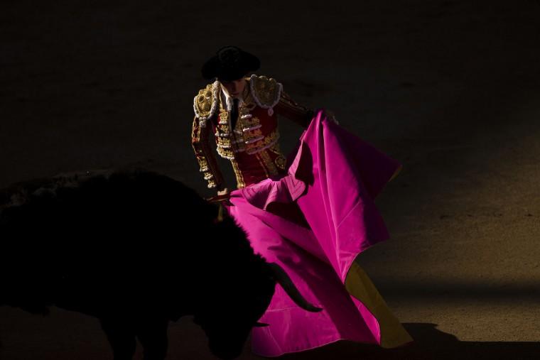 Spanish bullfighter Roman performs with a El puerto de San Lorenzo's ranch fighting bull during a bullfight of the San Isidro's bullfighting fair in Madrid, Spain, Thursday, May 19, 2016. (AP Photo/Daniel Ochoa de Olza)