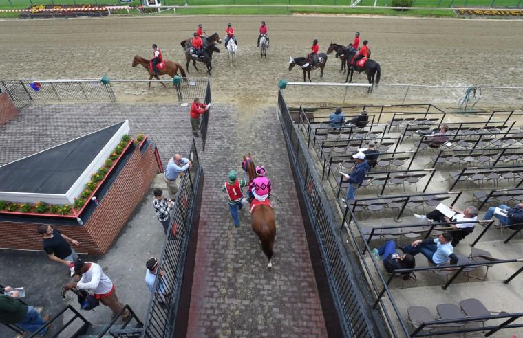 Nik Juarez heads out to the track at Pimlico. (Lloyd Fox/Baltimore Sun)