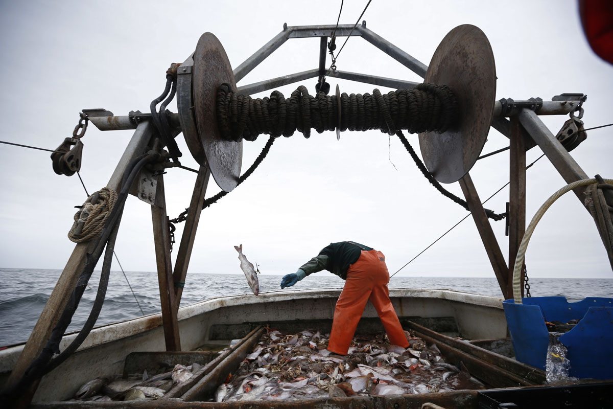 Northeastern fishermen struggling with warming waters