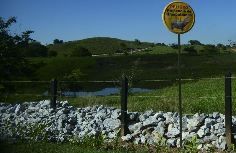 A sign warns about the presence of hippos at the Hacienda Napoles theme park, once the private zoo of drug kingpin Pablo Escobar at his Napoles ranch, in Doradal, Antioquia department, Colombia on June 22, 2016. (RAUL ARBOLEDA/AFP/Getty Images)