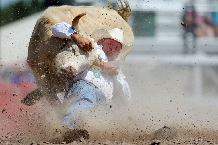 Tom Lewis competes in the steer wrestling event during the fifth day of the 120th annual Cheyenne Frontier Days Rodeo on Wednesday, July 27, 2016, at Frontier Park Arena in Cheyenne, Wyo. (Blaine McCartney/The Wyoming Tribune Eagle via AP)