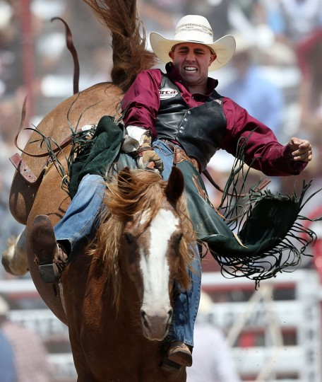 Jake Springer of Stephenville, Texas, competes in the bareback event during the fifth day of the 120th annual Cheyenne Frontier Days Rodeo Wednesday afternoon, July 27, 2016, at Frontier Park Arena in Cheyenne, Wyo. (Blaine McCartney/Wyoming Tribune Eagle via AP)