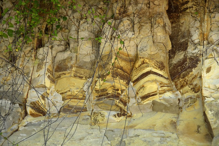 "Scientist Robert Hazen describes this detail of Calvert Cliffs as having, ""Layers of sediment with varying amounts of iron, which turn the layers a darker, reddish-brown color."" (Algerina Perna/Baltimore Sun)"