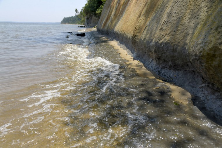"The Chesapeake Bay waters lap the edges of the Calvert Cliffs at high tide. According to the Maryland Department of Natural Resources, the cliffs ""are slowly eroding at the rate of almost 3 feet per year."" (Algerina Perna/Baltimore Sun)"