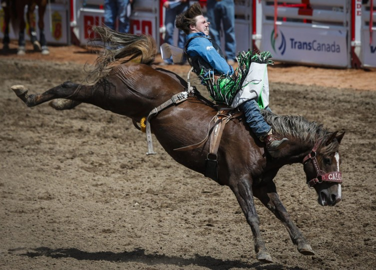 Connor Hamilton stays on his mount during novice bareback rodeo action during the Calgary Stampede in Calgary, Alberta, Sunday, July 10, 2016. (Jeff McIntosh/The Canadian Press via AP)
