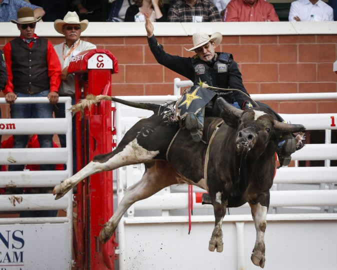 Joao Ricardo Vieira, of Sao Paulo, Brazil, rides Tricky Deal during bull riding rodeo action at the Calgary Stampede in Calgary, Alberta, Sunday, July 10, 2016. (Jeff McIntosh/The Canadian Press via AP)