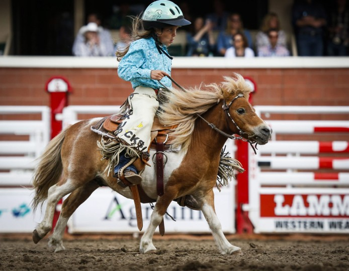 Kennedi MacMillan, 7-years-old, gathers the horses after the wild pony race during the Calgary Stampede in Calgary, Alberta, Sunday, July 10, 2016. (Jeff McIntosh/The Canadian Press via AP)