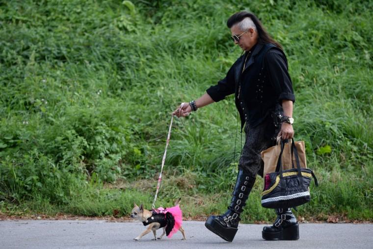 A Steampunk enthusiast Dante Prince walks his 2 year-old chihuahua 'Peyton' as they attend the first day of 'The Asylum Steampunk Festival' in Lincoln, northern England on August 26, 2016. The four-day alternative lifestyle festival is the largest and longest running steampunk festival in the World; combining art, literature, music, fashion and comedy. Steampunk is a subgenre of science fiction or science fantasy that incorporates technology and aesthetic designs inspired by 19th-century industrial steam-powered machinery. / (AFP Photo/Oli Scarff)