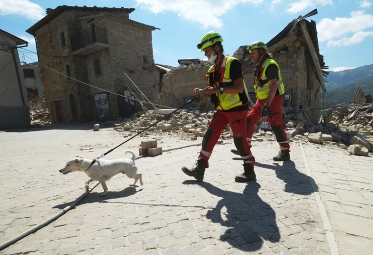 Rescuers walk with a dog past damaged buildings in a street in the central Italian village of Illica, near Accumoli, on Wednesday after a powerful earthquake rocked central Italy.  (MARIO LAPORTA/AFP/Getty Images)
