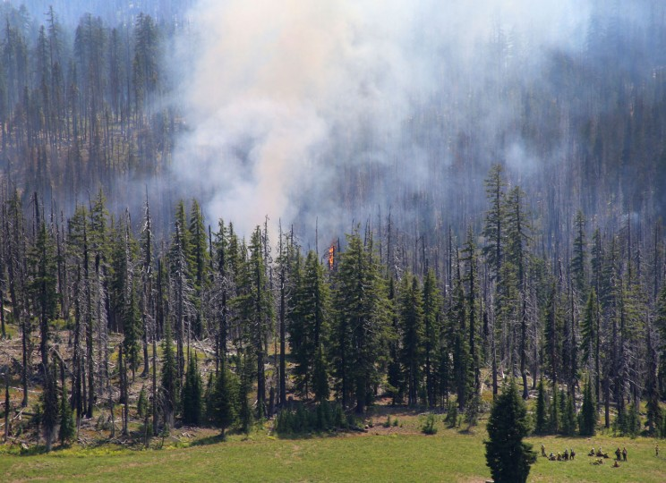 Firefighters gather in a meadow as they prepare to do a burnout of a wildfire southwest of Crater Lake, Ore., Thursday, Aug. 4, 2016. A wildfire burning southwest of Crater Lake prompted an evacuation warning for some parts of Crater Lake National Park. (Brian Davies/The Register-Guard via AP)