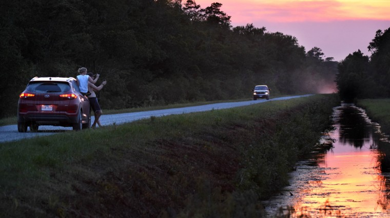 Sightseers stop along Wildlife Drive at sunset to capture images of a bear in a field at Alligator River National Wildlife Refuge. The refuge, located a few miles inland of North Carolina's Outer Banks, is home to one of the east coast's largest concentrations of black bears. (Jerry Jackson/Baltimore Sun)