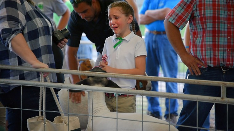 Having grown emotionally attached on her first year as a 4-H participant, Elizabeth Balint, 9 weeps, anticipating the impending auction sale of her ewe lamb Nora, which was awarded reserve grand champion during the annual Harford County Farm Fair. (Karl Merton Ferron / Baltimore Sun)