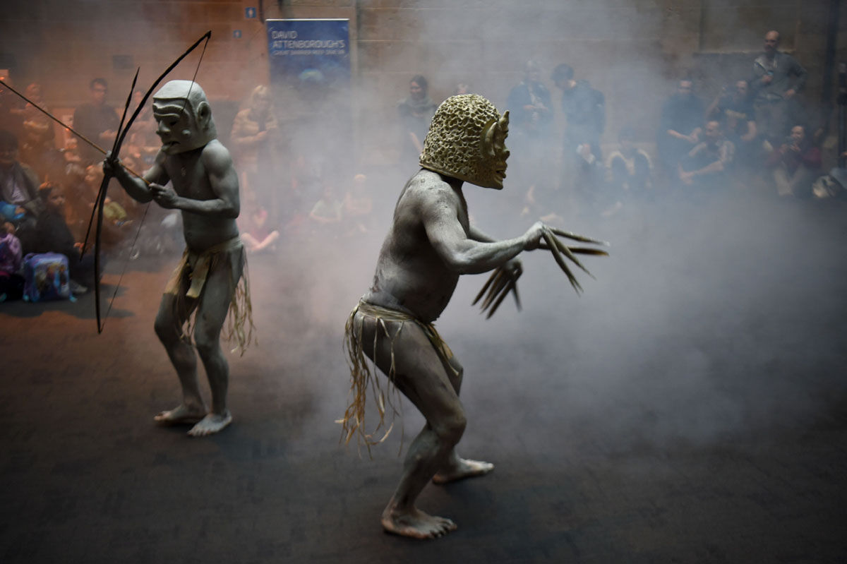 Asaro Mud Men perform at Australian Museum