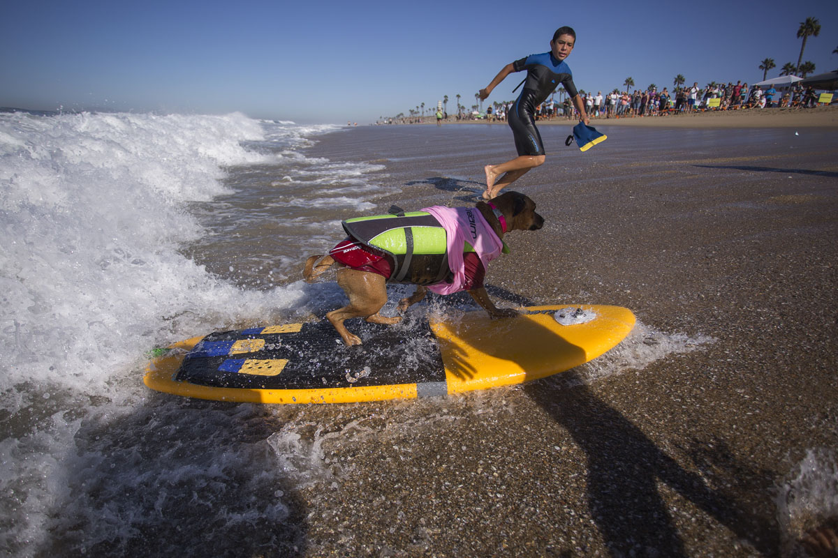 Huntington beach california stock photos and pictures getty images - Huntington Beach California Stock Photos And Pictures Getty Images 43