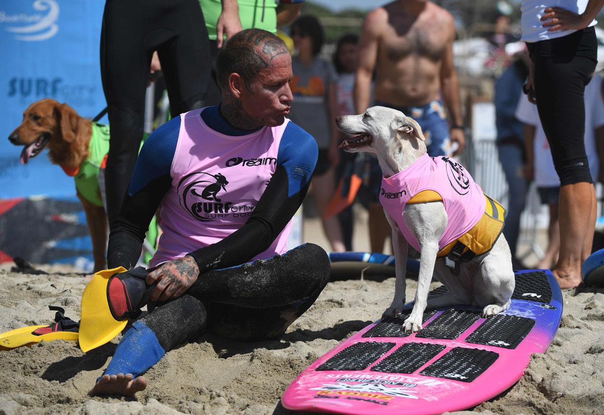 http://darkroom-cdn.s3.amazonaws.com/2016/09/AFP-Getty_US-LIFESTYLE-SPORT-ANIMAL-DOG-SURF-3.jpg
