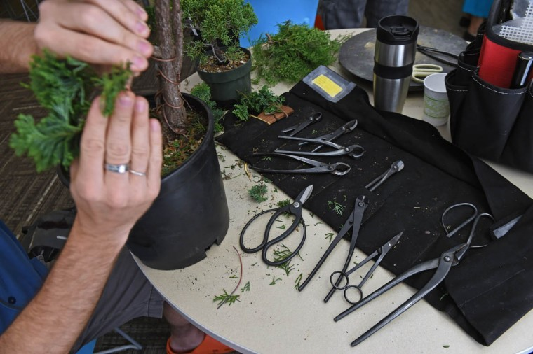 "Pictured are tools used by a member during a monthly meeting of the Baltimore bonsai Club. ""The Baltimore Bonsai Club; founded in 1972; is an active and growing group of bonsai enthusiasts in Central Maryland. Club activities include exhibitions, workshops, collection trips and visiting artists,"" according to its website. (Kenneth K. Lam, Baltimore Sun)"