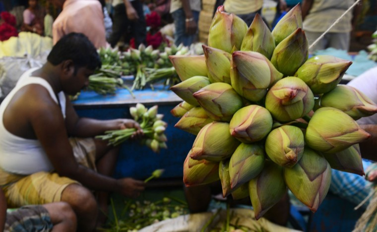 Indian flower vendors showcase lotus flowers to attract puja organisers for Durga Puja, at a wholesale flower market in Kolkata on October 6, 2016. The five-day Durga Puja festival, which commemorates the slaying of the demon king Mahishasur by the goddess Durga and marks the triumph of good over evil, begins on October 7. (DIBYANGSHU SARKAR/AFP/Getty Images)