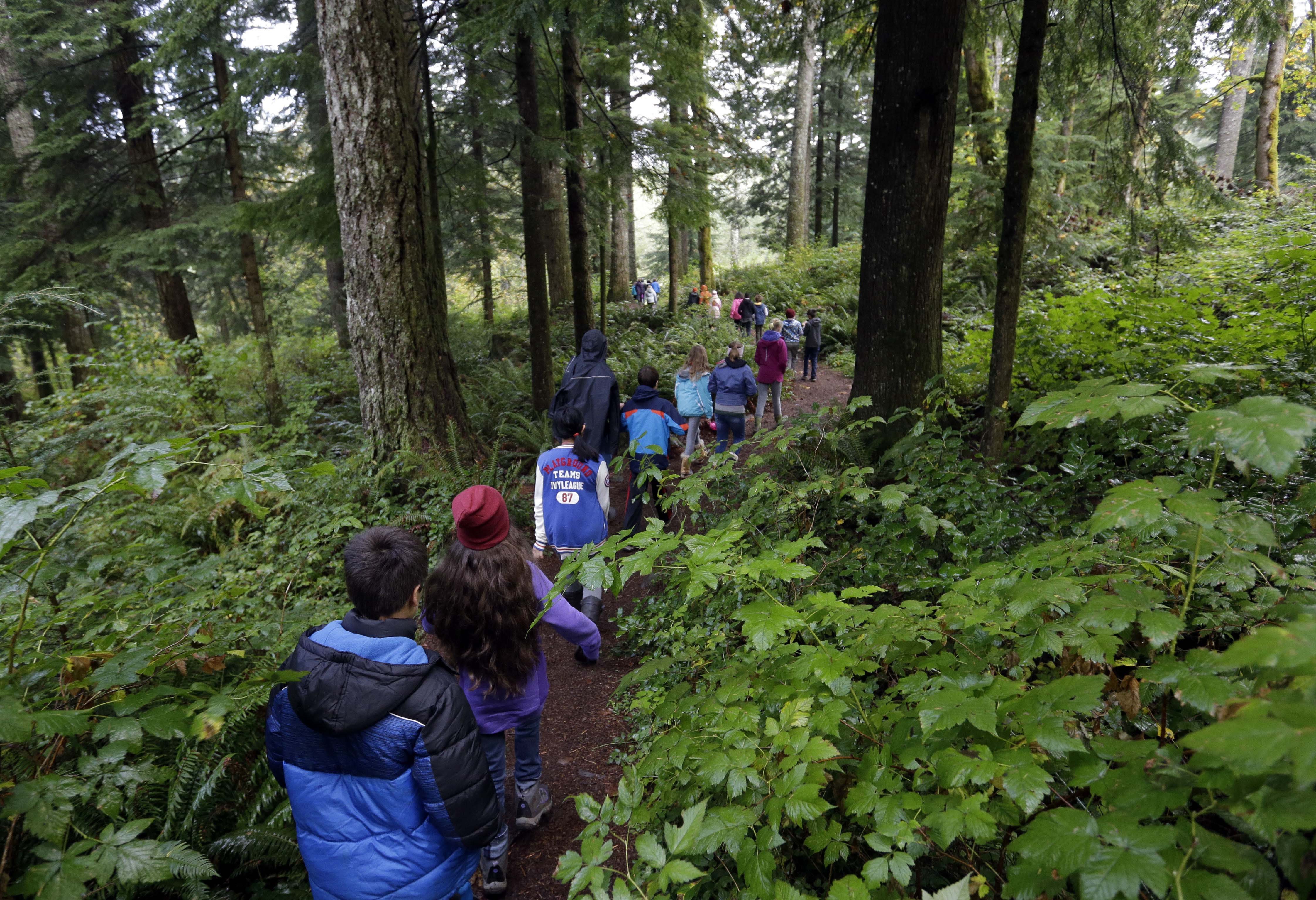 In Oregon's Mount Hood National Forest, outdoor school for students