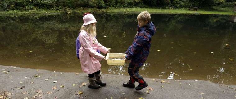 In this Oct. 6, 2016 photo, Outdoor School students Maya Herring, left, and Karl Krueger carry a bucket full of pond water to be studied during a lesson at Camp Howard in Mount Hood National Forest near Corbett, Ore. The outdoor education is unique to Oregon and is a rite-of-passage for public school students that's meant to instill a respect for nature in each generation - studies show it improves attendance and boosts test scores. (AP Photo/Don Ryan)