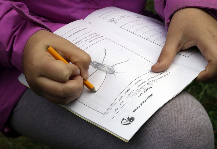 In this Oct. 6, 2016 photo, Outdoor School student Evie Larson enters a drawing of a pond water insect in her field study notebook during a lesson at Camp Howard in Mount Hood National Forest near Corbett, Ore. The outdoor education is unique to Oregon and is a rite-of-passage for public school students that's meant to instill a respect for nature in each generation - studies show it improves attendance and boosts test scores. (AP Photo/Don Ryan)