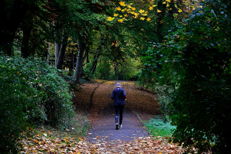 A man walks through a public garden in Berlin's Charlottenburg district on October 28, 2016. (TOBIAS SCHWARZ/AFP/Getty Images)