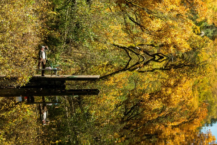 A fisherman stands on a bridge as autumnally colored trees reflect in the water of the Hoellensteinsee lake near Viechtach, southern Germany, on November 1, 2016. (ARMIN WEIGEL/AFP/Getty Images)