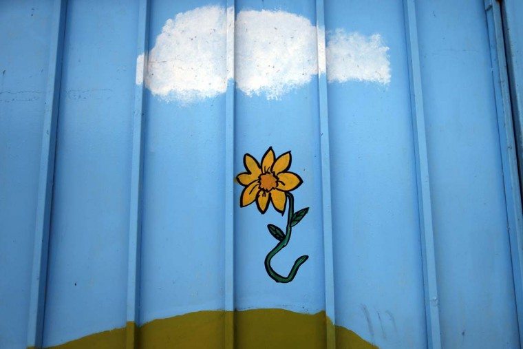 This Oct. 22, 2016 photo, a painted flower is seen on the wall of the Galvarino child care center where a young girl named Lissette died while in the custody of the state, in Santiago, Chile. Lissette's case exploded in a crisis over the care of at-risk children that has outraged Chileans. After initially reporting just 185 deaths, the government recently acknowledged that 865 children have died under the care of the National Service for Minors over 11 years. (AP Photo/Luis Hidalgo)