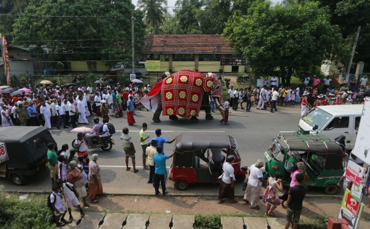 "In this Oct. 20, 2016 photo, Sri Lankans walk in a procession with a tusker known as ""Nadungamuwe Tusker,"" who is famous for carrying the sacred tooth relic of the temple of tooth during its annual procession, during a felicitation to the animal for his services to Buddhist temple processions in Kirindiwela village, outside Colombo, Sri Lanka. For Buddhists, who make up 70 percent of the island's 20 million population, elephants are believed to have been a servant of the Buddha and even a previous incarnation of the holy man himself. Sinhalese kings rode elephants into battle against invading armies. And every year, colorfully decorated tuskers carry an ornate box containing a replica of one of the Buddha's teeth. (AP Photo/Eranga Jayawardena)"
