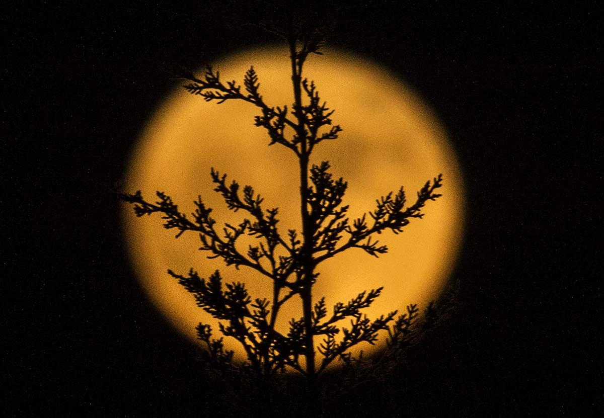 Supermoon 2016 seen around the world