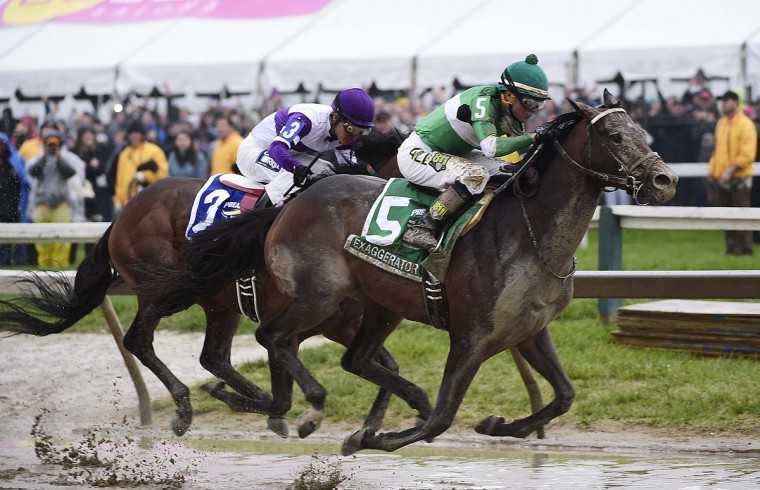 Number five Exaggerator makes a move on Number three Nyquist coming out of the last turn during the 141st Preakness Stakes. (Emma Patti Harris/Baltimore Sun)