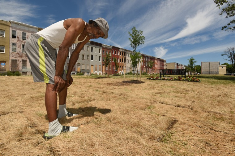 "James Gray, 68, a lifelong resident of Sandtown, visits the new ""green space"" in the 1000 block of North Stricker Street in Sandtown, less than an hour after Gov. Larry Hogan and his entourage visited this newly created park, which has replaced a  block of demolished vacant rowhouses. Gray was studying the already brown grass that appeared to be dying as it baked under the midday sun. Gray and other neighbors said were not aware of the plans for this lot, and were pessimistic about the viability of the new additions, which included some trees, annuals, two benches and the sod. (Amy Davis/Baltimore Sun)"