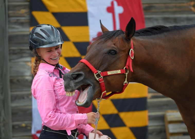 Maya Howard,13, of Westminster with her horse, Clark Kent participate in the equestrian competition at the Maryland State Fair. (Lloyd Fox/Baltimore Sun)