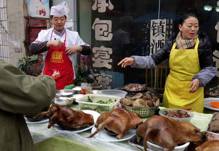 CHINA-WINTER-SOLSTICE-ANIMAL-DOG
