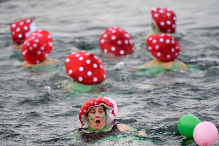 "A disguised woman swims during the 78th ""Coupe de Noel"" (Christmas cup) swimming race in the Lake Geneva, on December 18, 2016 in Geneva. More than 1800 participants took part in the event, a 12-meter-long swimming off the Geneva's bank in the 7 degrees Celsius cold water. (FABRICE COFFRINI/AFP/Getty Images)"