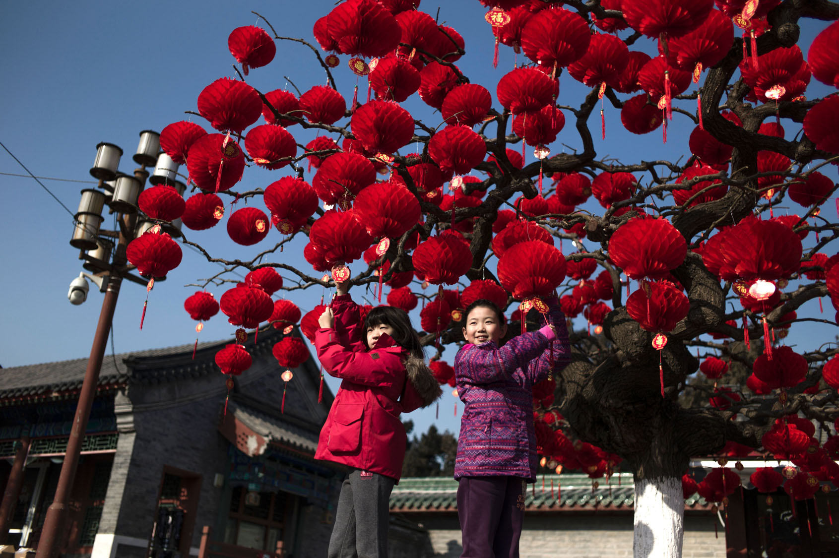 preparing for the lunar new year across asia - Chinese Lunar New Year