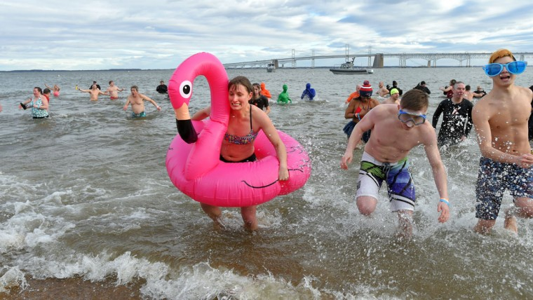Colleen Larson of Annapolis in her pink flamingo during the Corporate Plunge. (Lloyd Fox/Baltimore Sun)