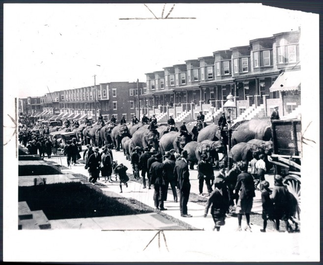 May 20, 1956 - Ringling BARNUM AND BAILEY CIRCUS -- This photograph taken over 30 years ago depicts elephants arriving at Edmondson Street and parading up Bentalou Street to circus grounds. Photo taken by Baltimore Sun Staff Photographer Leroy B. Merriken.