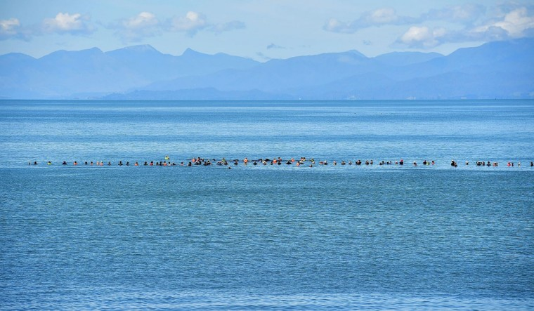 A human chain stops Pilot whales from returning to shore during a mass stranding at Farewell Spit on February 11, 2017. More than 400 whales were stranded on a New Zealand beach on February 10, with most of them dying quickly as frustrated volunteers desperately raced to save the survivors. (AFP PHOTO / Marty MELVILLE)